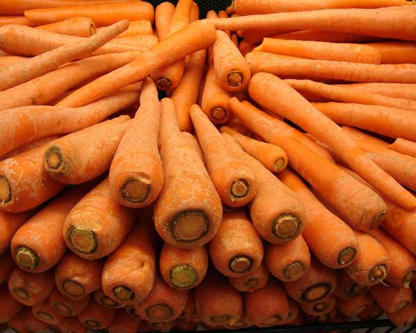 A picture of a Carrot