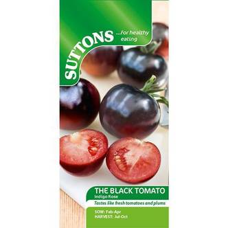 Tomato Indigo Rose Seeds - The Black Tomato